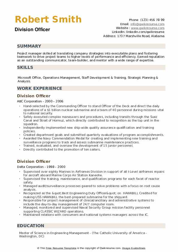 Division Officer Resume example