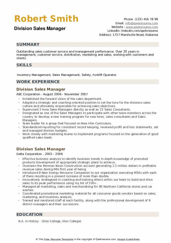 Division Sales Manager Resume example