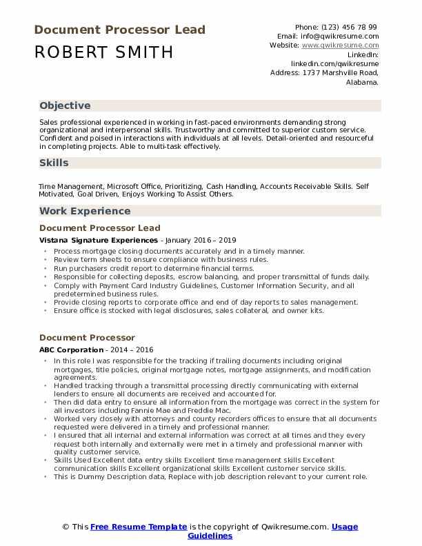 Document Processor Lead Resume Model