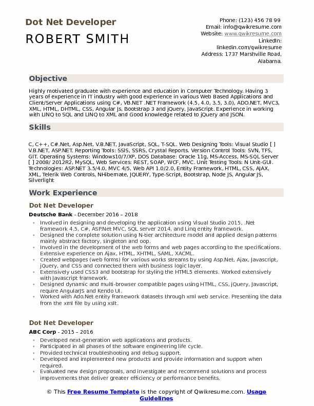 dot net developer resume example