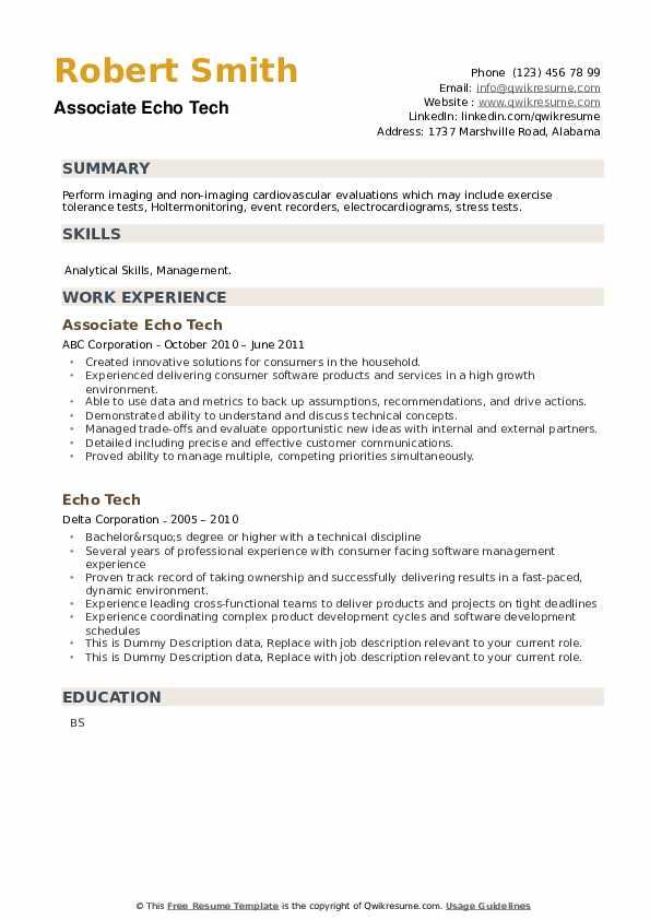 Echo Tech Resume example