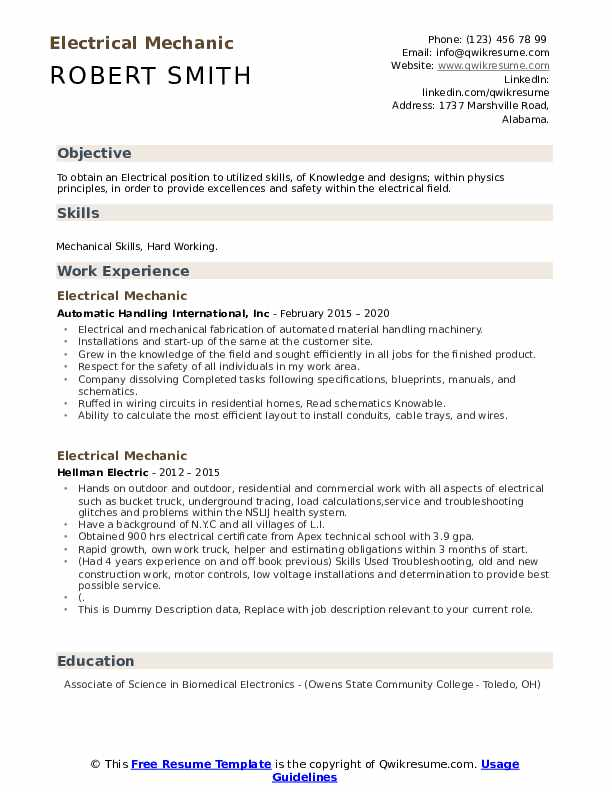 Electrical Mechanic Resume example