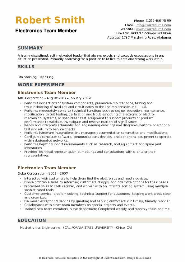 Electronics Team Member Resume example