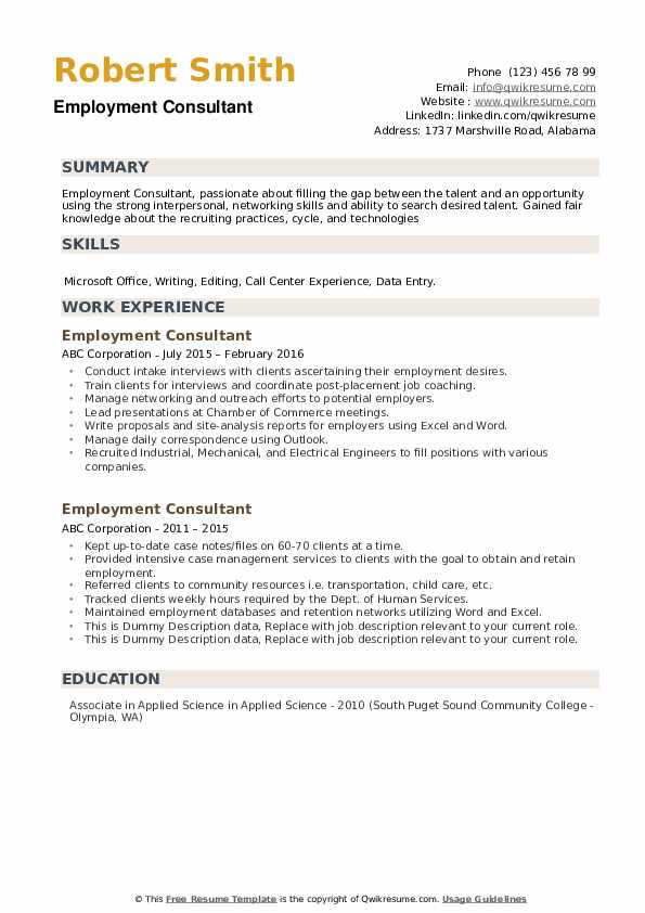Employment Consultant Resume example