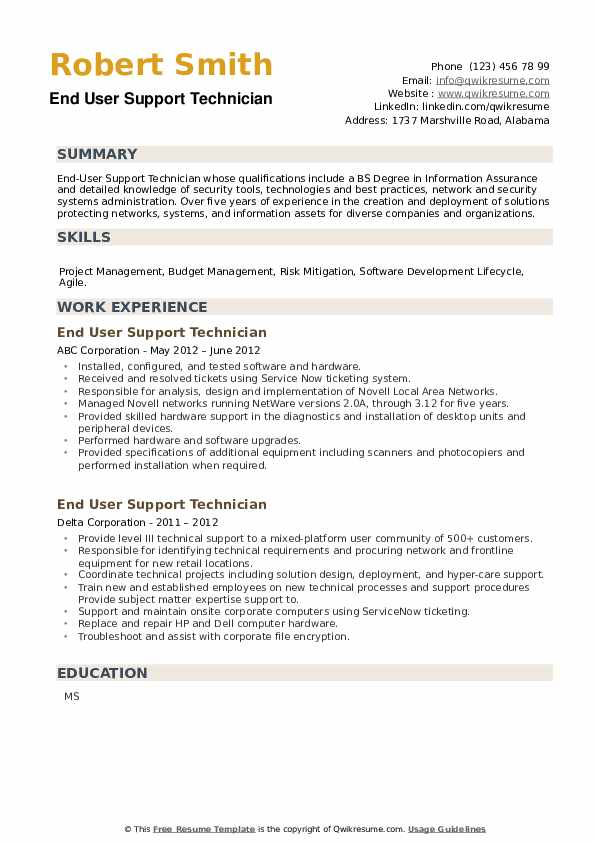 End User Support Technician Resume example