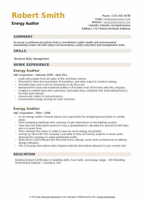 Energy Auditor Resume example