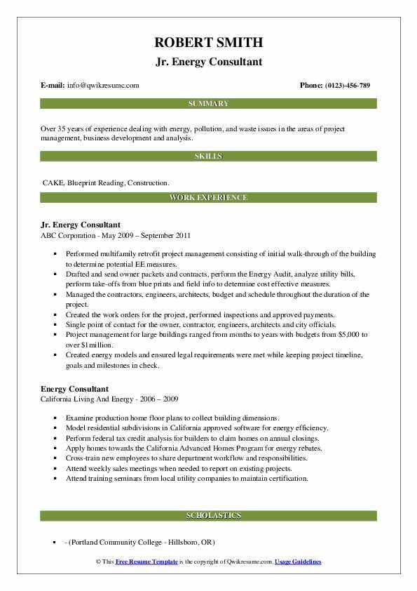 energy consultant resume samples  qwikresume