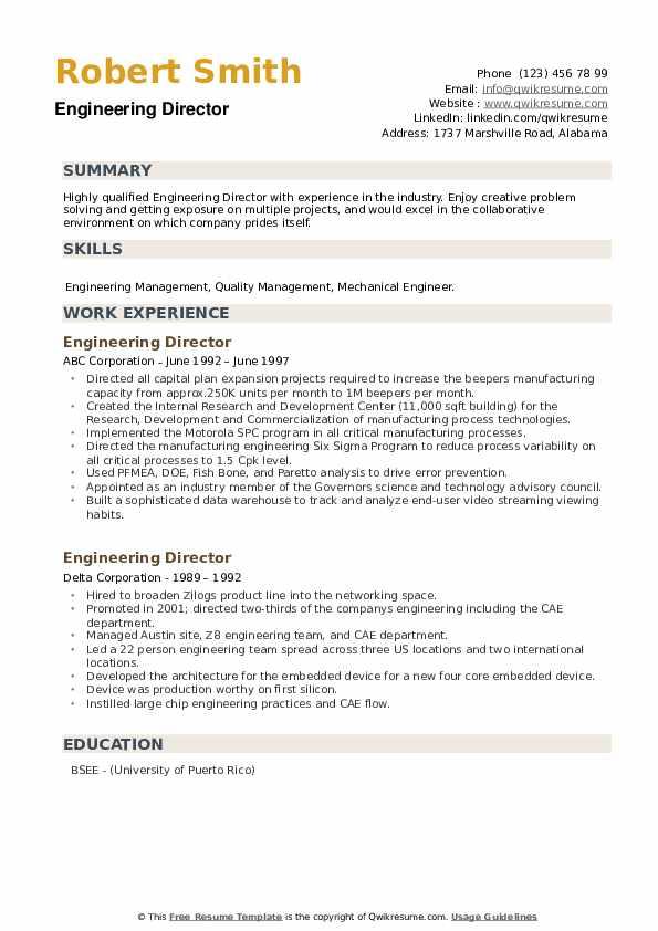 Engineering Director Resume example