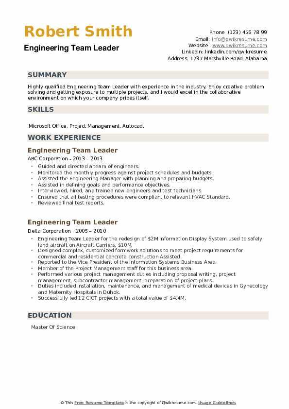 Engineering Team Leader Resume example