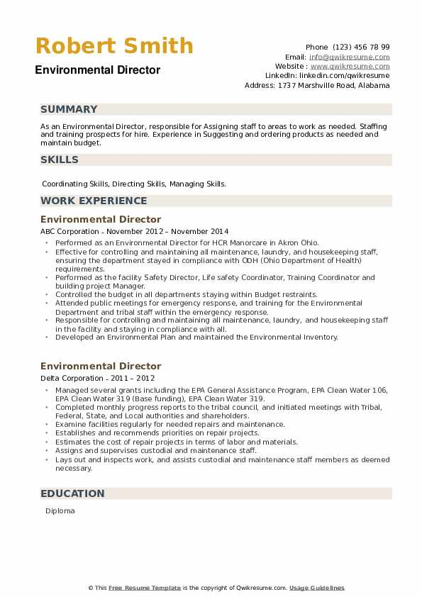 Environmental Director Resume example