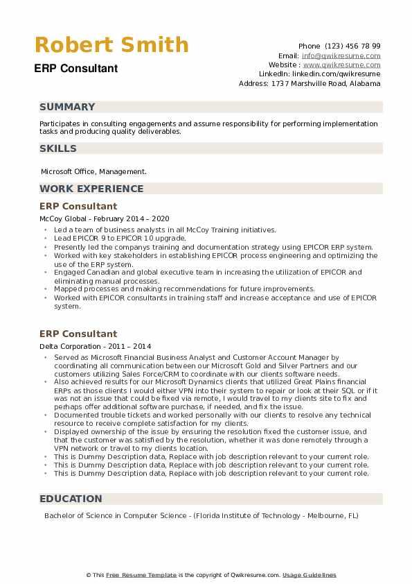 ERP Consultant Resume example