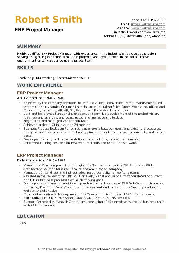 ERP Project Manager Resume example
