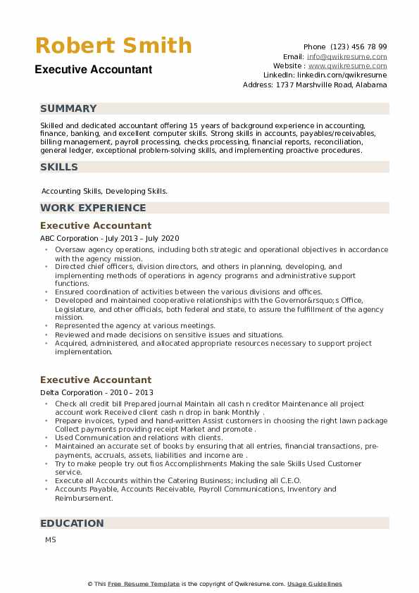 Executive Accountant Resume example
