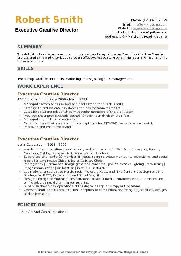 Executive Creative Director Resume example