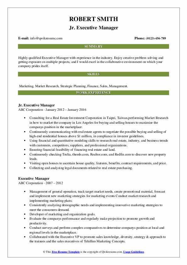 Jr. Executive Manager Resume Model