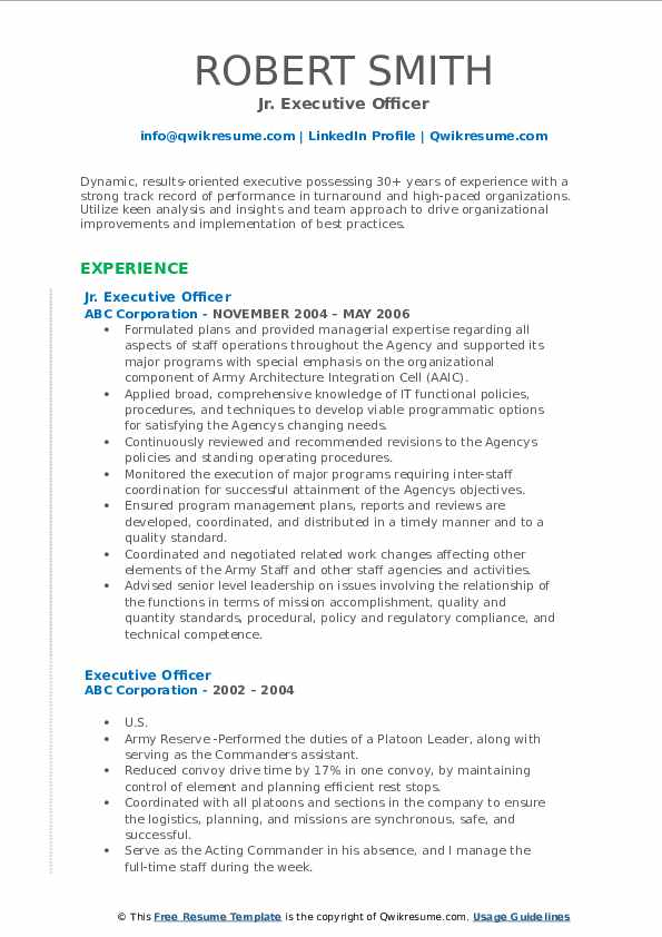 Jr. Executive Officer Resume Template
