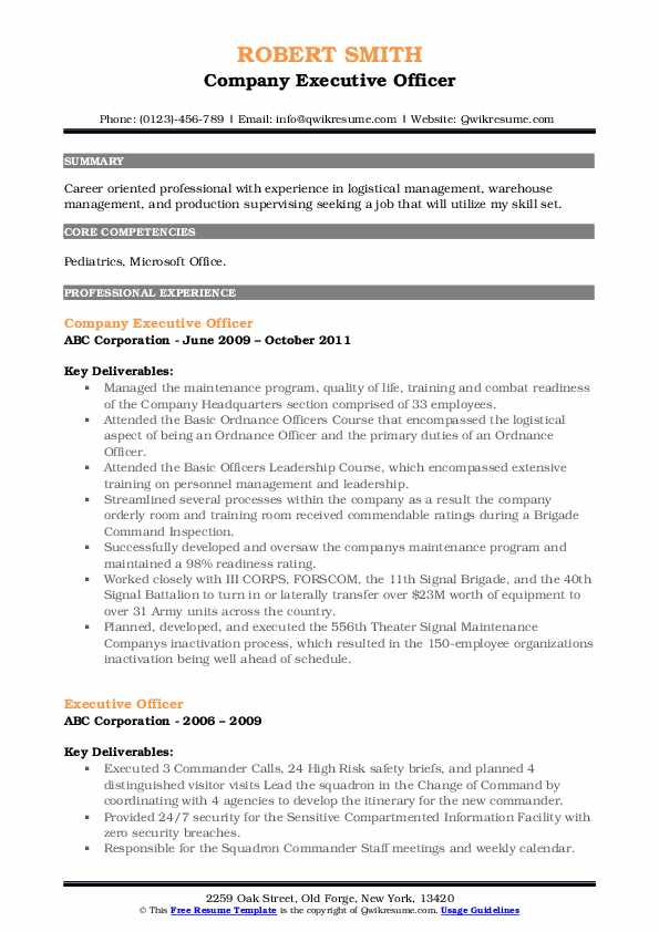 Company Executive Officer Resume Example