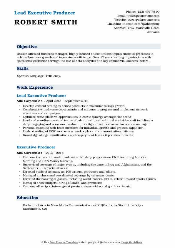 Lead Executive Producer Resume Example