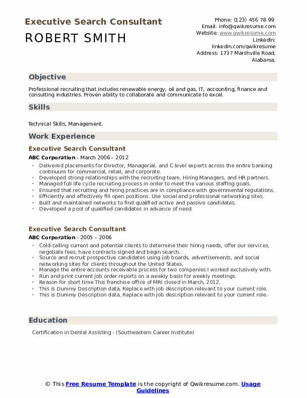Executive Search Consultant Resume example