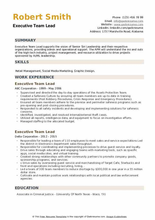 Executive Team Lead Resume example