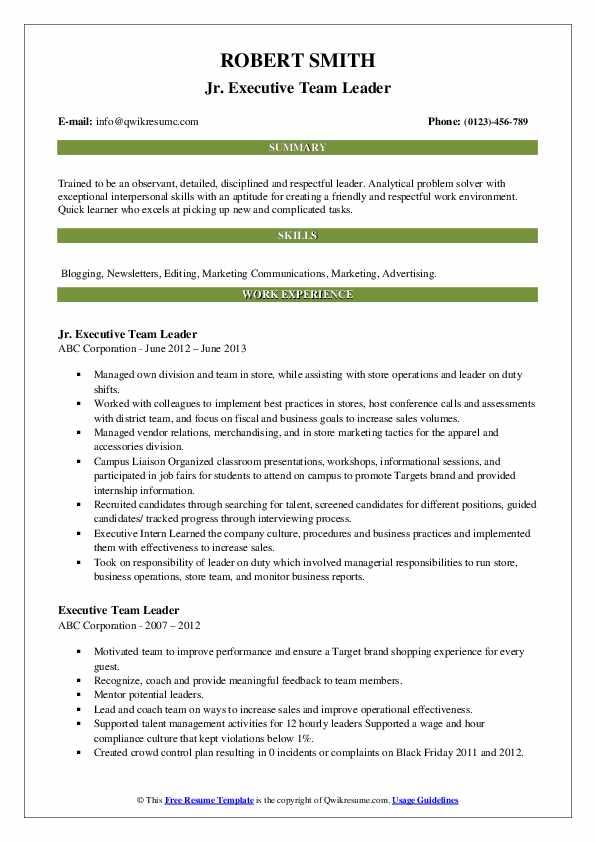 Jr. Executive Team Leader Resume Sample