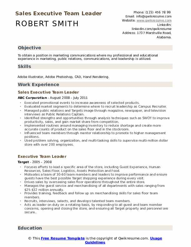 Sales Executive Team Leader  Resume Model
