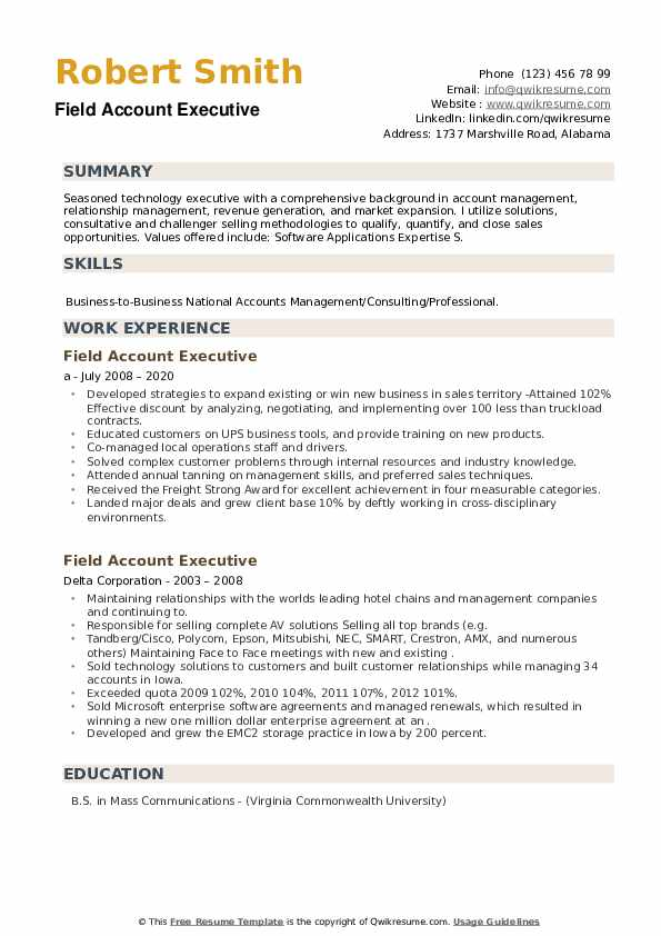 Field Account Executive Resume example