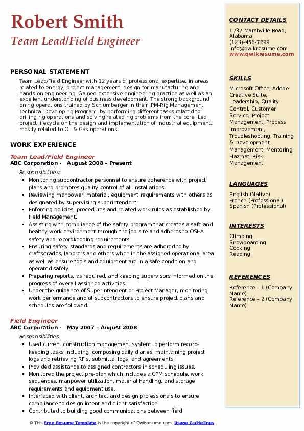 Team Lead/Field Engineer Resume Template