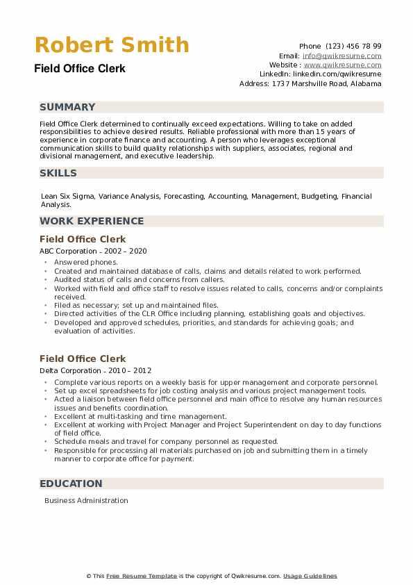 Field Office Clerk Resume example