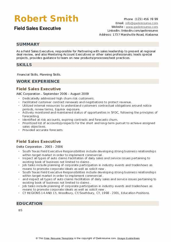 Field Sales Executive Resume example
