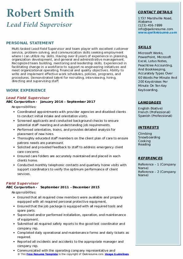 Lead Field Supervisor Resume Format
