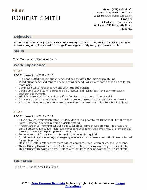 Filler Resume example