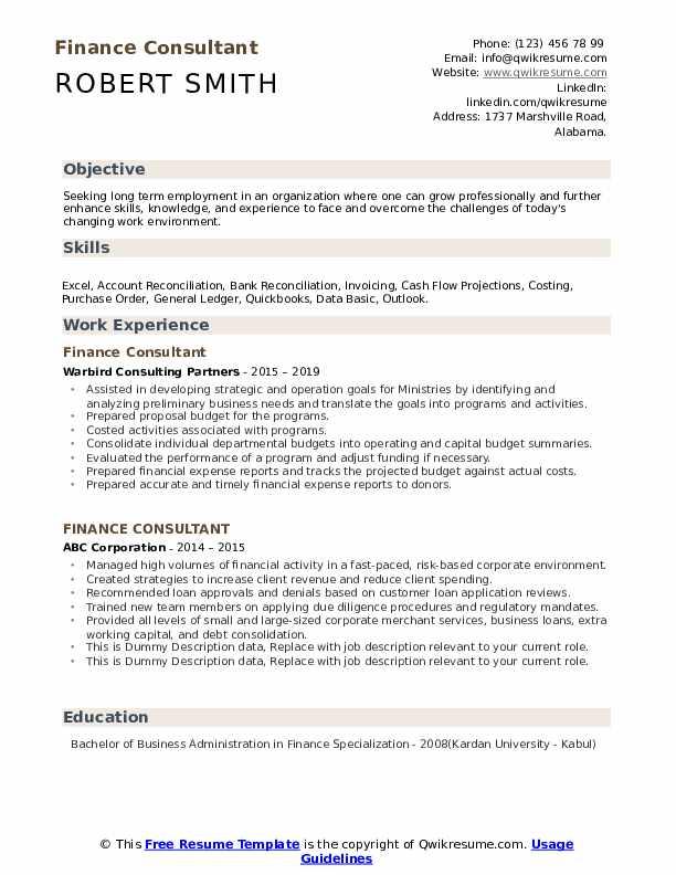 Finance Consultant Resume example