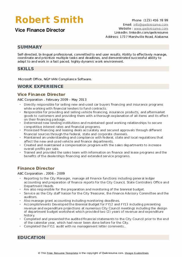 Vice Finance Director Resume Template