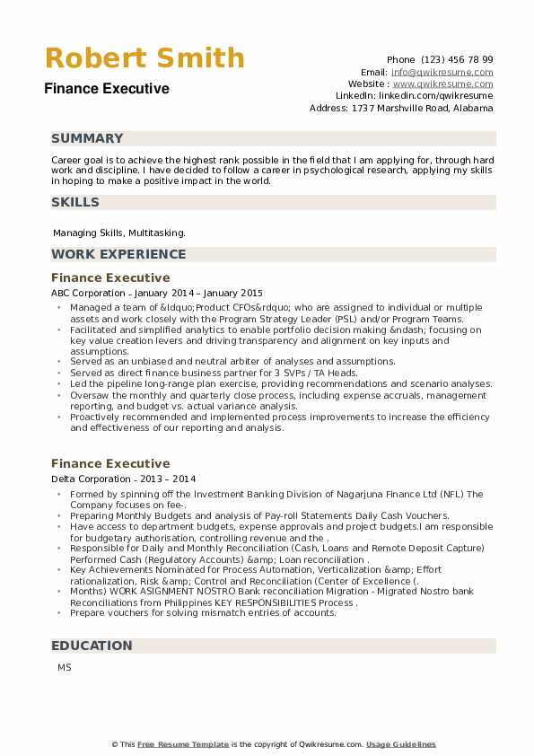 Finance Executive Resume example