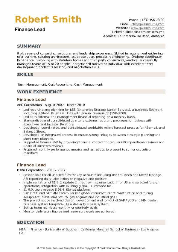 Finance Lead Resume example