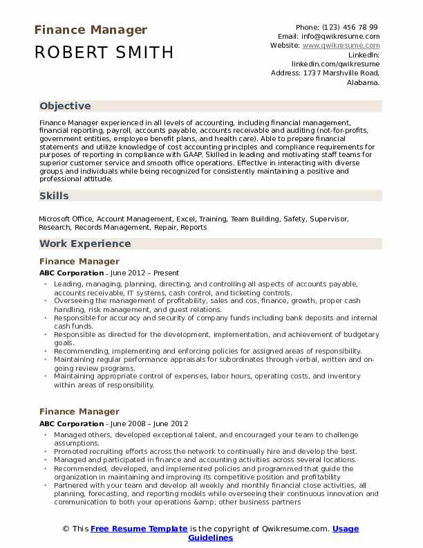 Finance Manager Resume Example