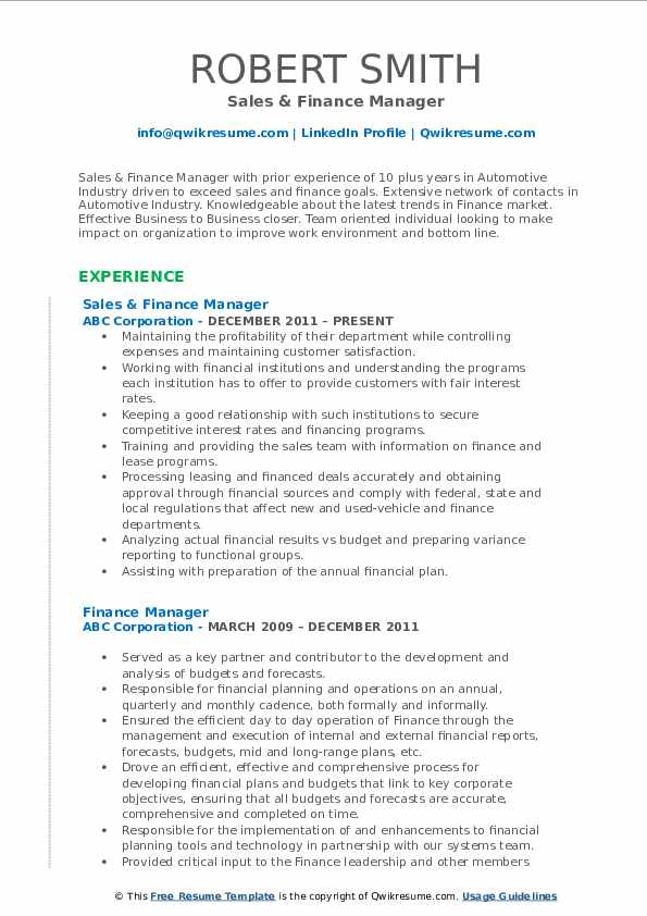 Sales & Finance Manager Resume Example