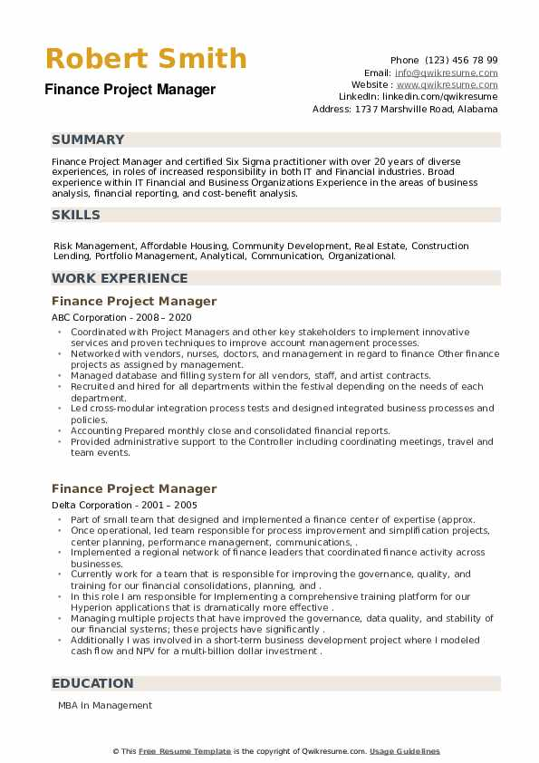Finance Project Manager Resume example
