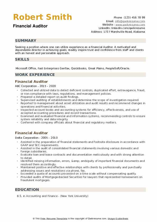 Financial Auditor Resume example