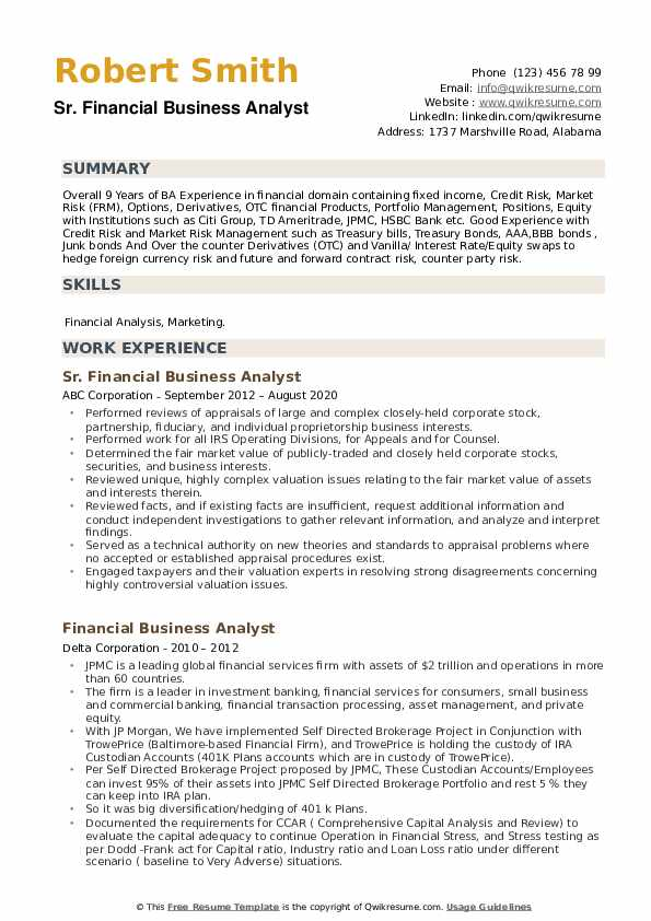 Financial Business Analyst Resume example