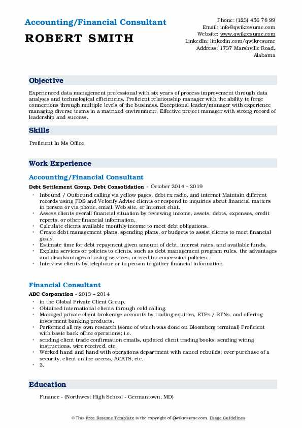 Accounting/Financial Consultant Resume Model