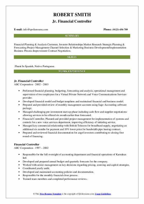 Jr. Financial Controller Resume Model