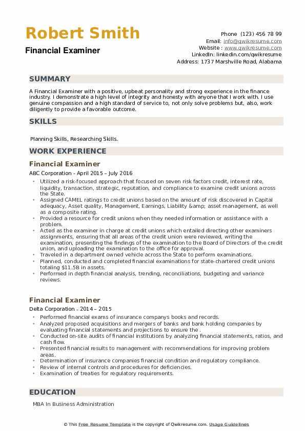Financial Examiner Resume example