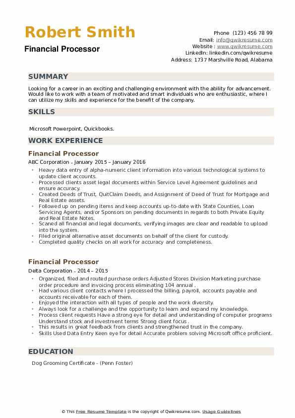 Financial Processor Resume example
