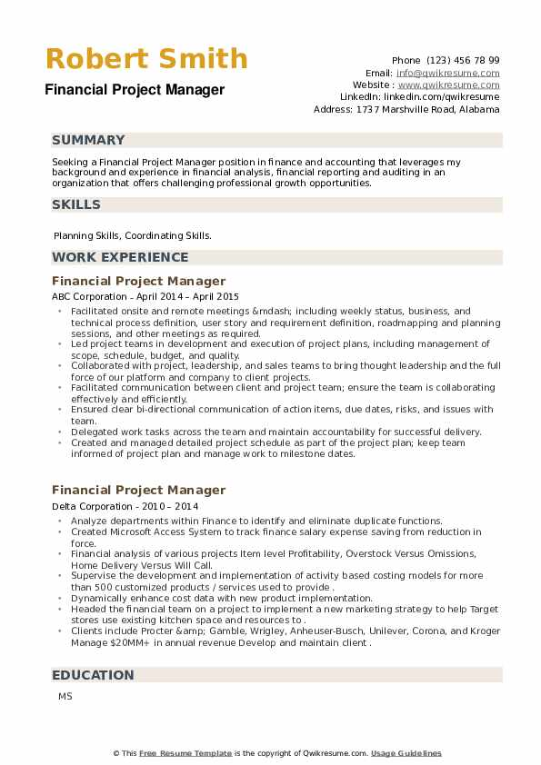 Financial Project Manager Resume example