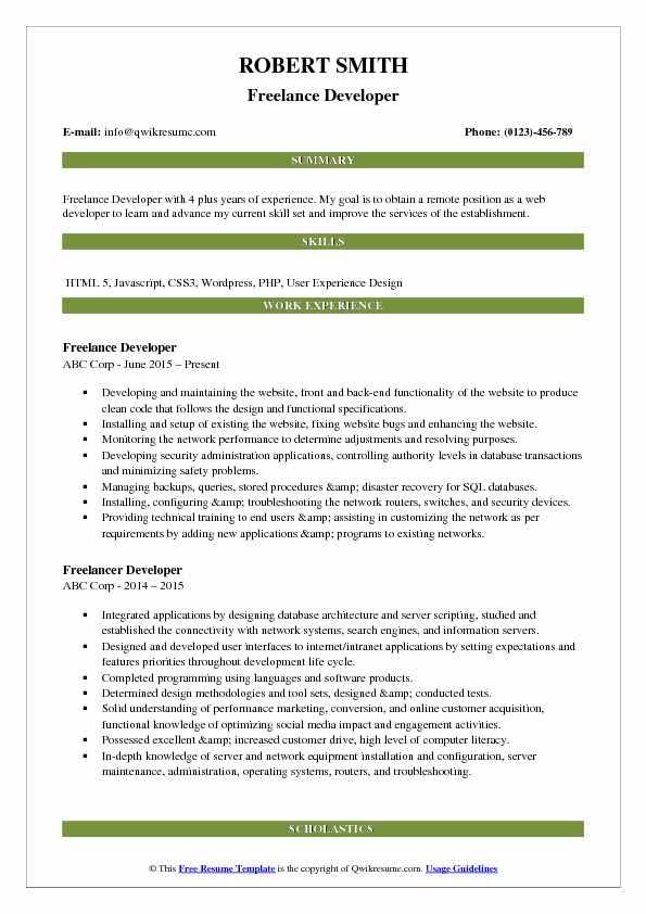 Freelance Developer Resume Format