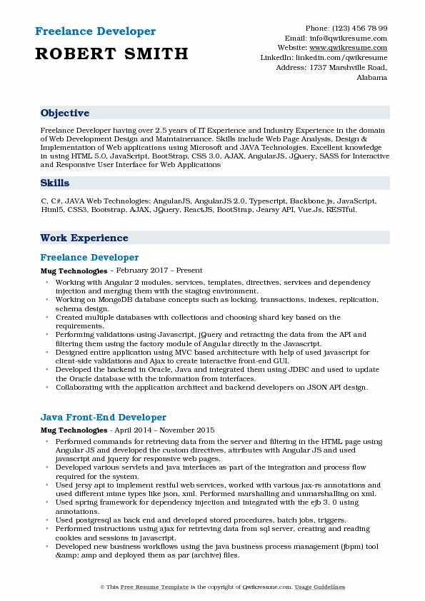 Freelance Developer Resume Example