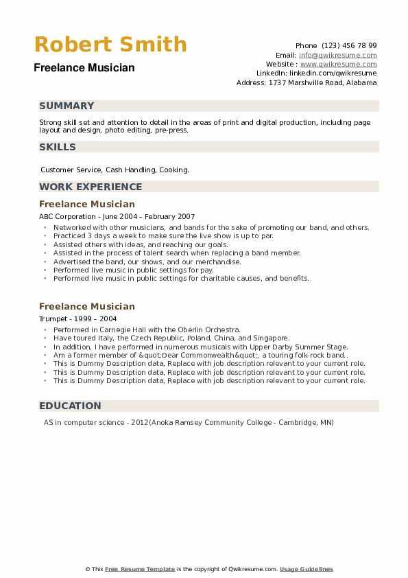 Freelance Musician Resume example
