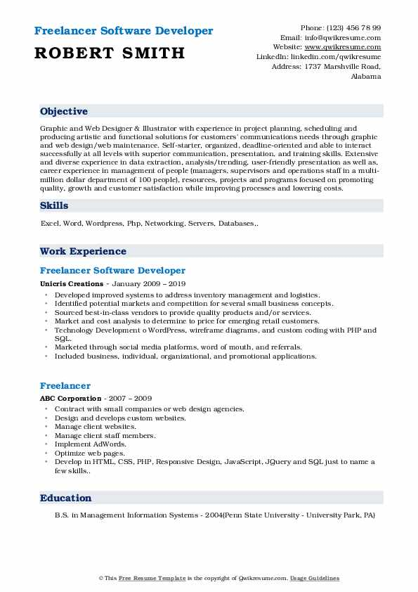 Freelancer Software Developer Resume Model